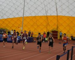 AM CR halova atletika 2020